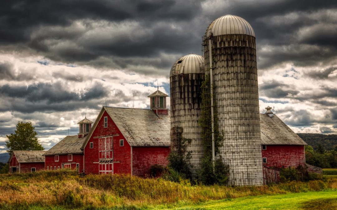 The Silo Mentality: How To Break Down The Barriers In Your (partially) Virtual Teams?